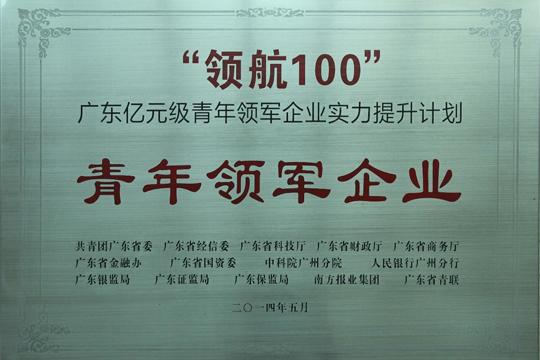 2014年广东亿元企业实力提升计划青年领军企业-佛朗斯